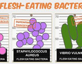 infographic about flesh eating bacteria